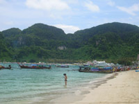 Koh Phi Phi - there really are lots of boats