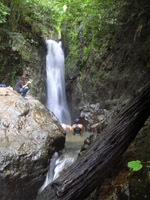 Take a dip in Bang Pae waterfall
